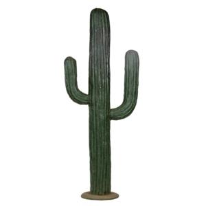 Kaktus lasikuituV