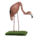 flamingo1V
