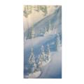roikko-talvimaisema-V