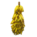 banaaniterttuV