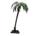 kentia-palmuV